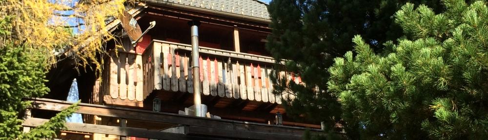 Wellnes-Hütte Falkertsee