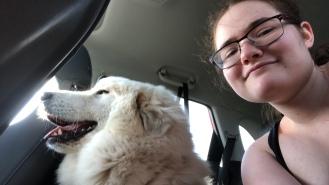 Wir fahren zur Hundeschule