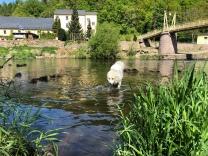 Im Wasser an der Wackelbrücke