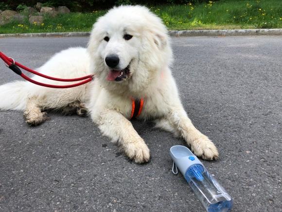 Die Bella mit ihrer neuen Wandertrinkflasche