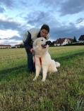 Die Bella und ihr großer Mensch