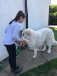 Die Bella bekommt ein Geschenk