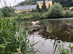 Erste Badestation an der Wackelbrücke