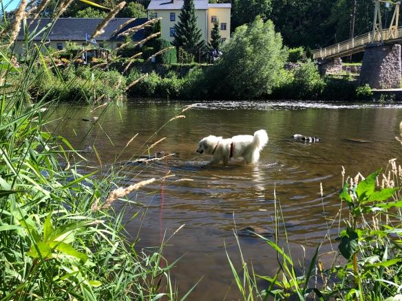 Die Bella im großen Fluß mit komischem Name