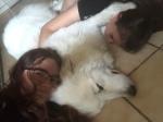 Meine Menschenschwestern und ihre Bella