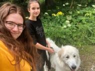 Spaziergang mit meinen Menschenschwestern
