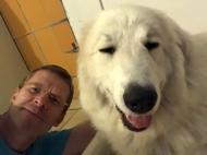 Mit meinem großen Mensch in der Kellerwohnung