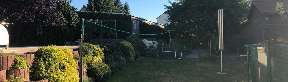 Die Bella in ihrem Garten