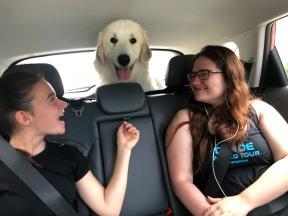 Die Bella hat ein eigenes Zimmer in ihrem roten Auto!