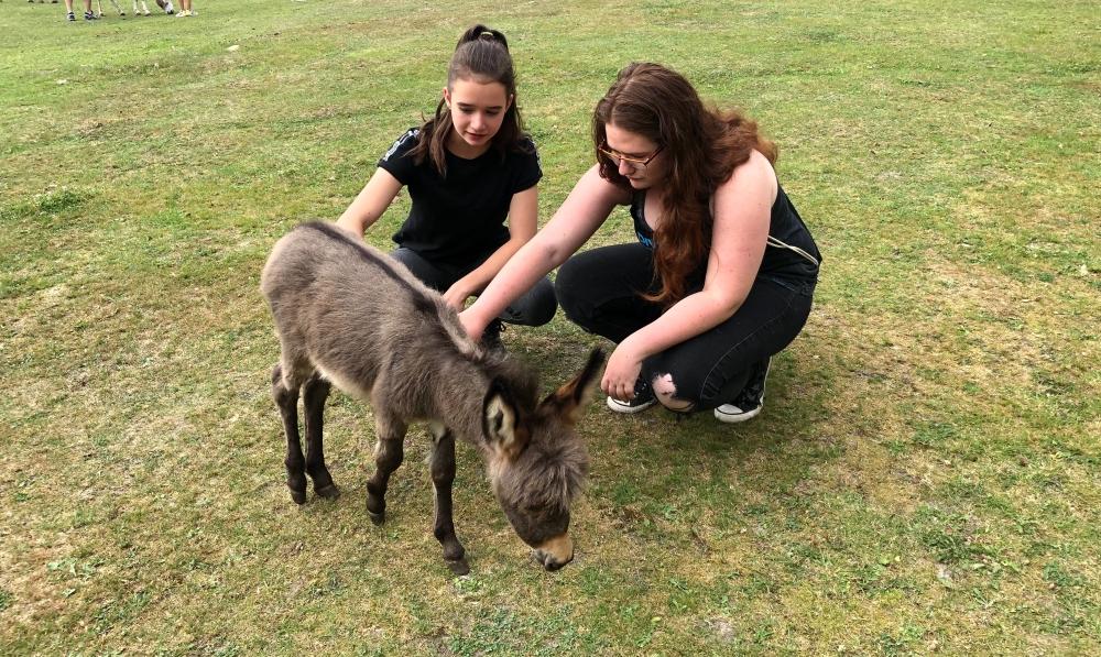 Alex und Jessi mit Baby-Esel