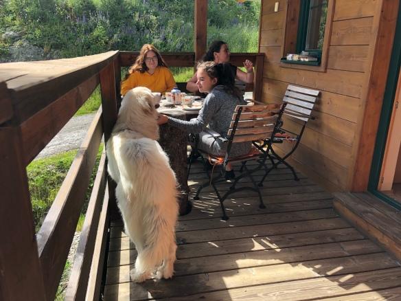 Beim Kaffee auf der Terrasse