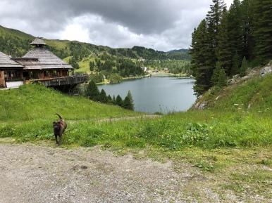 Mei-Zeit-Siedlung mit Blick auf den Turracher See