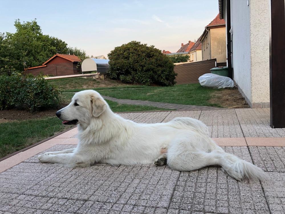 Ich liege auf meiner Terrasse
