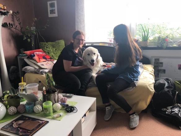 Die Bella und ihre Menschenschwestern