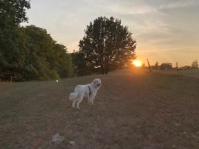 Pyri-Sonnenuntergang