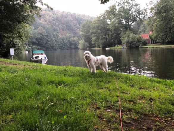 Die Bella am großen Fluß mit dem komischen Name