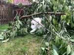 Ich helfe im Garten