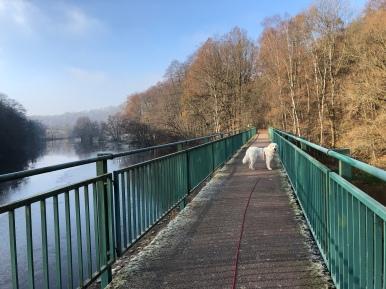 Wir gehen über die große Brücke …