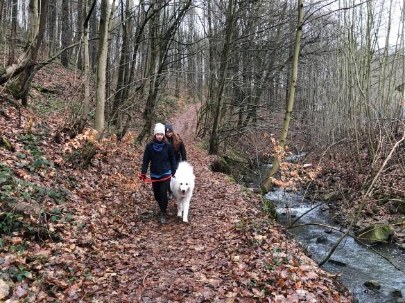 Sonntagsspaziergang mit meinen Menschenschwestern