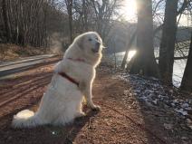 Die Bella beim großen Fluß mit dem komischen Namen