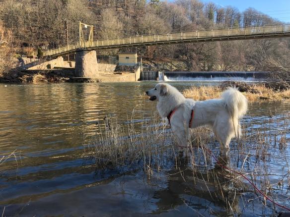 Im großen Fluß mit dem komischen Namen an der Wackelbrücke