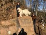 Die Bella mit ihren Menschenschwestern auf einem riesigen Felsen