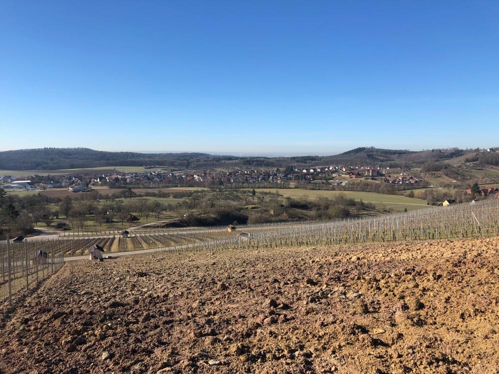 """Blick vom Weinberg: Kleinaspach, """"Sonnenhof"""", Einöd"""