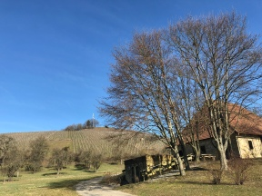 Blick zurück zum Aussichtspunkt, vorbei an der Historischen Kelter