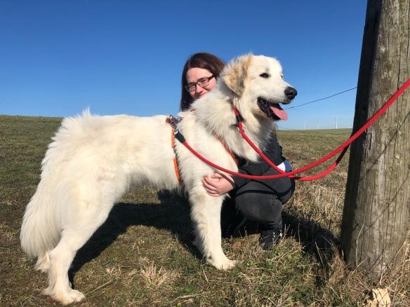 Die Bella mit ihrer großen Menschenschwester auf der großen Feldwiese