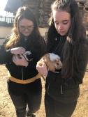 Alex & Jessi mit den Meerschweinchen
