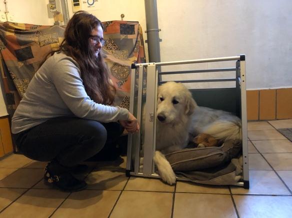 Die Bella beim Probeliegen in ihrem neuen Haus