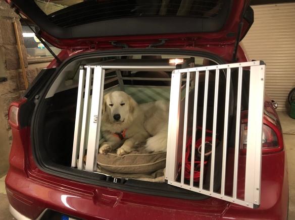 Wieder zu Hause. Ich bleibe in meinem roten Auto!