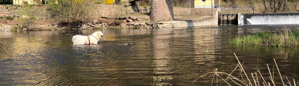 Die Bella im großen Fluß mit dem komischen Namen an der Wackelbrücke