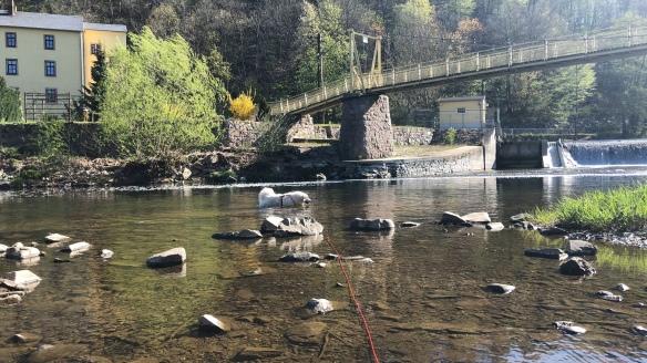 Die Bella schwimmt durch den großen Fluß mit dem komischen Namen