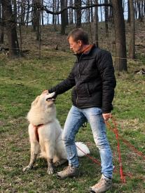 … und mit seinem großen Mensch auf der großen Wiese. Die Bella mag was futtern.