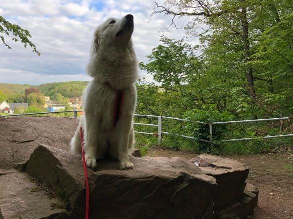 Ich bin ein Monument! Auf einem riesigen Felsen!