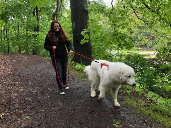Die Bella geht mit ihrer großen Menschenschwester spazieren