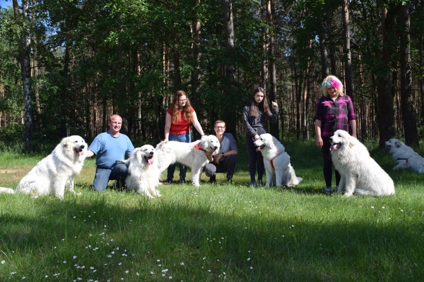 Fin, Ivy, Sissi, Bella und Pepe – die Pyris vom Ehrenberger Hof
