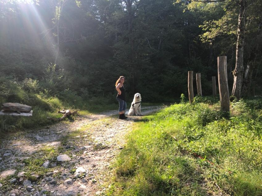 Spaziergang zum kleinen Bach