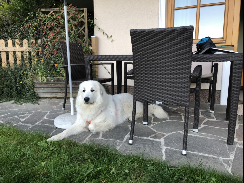 Das ist mein Platz auf der Terrasse
