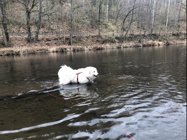 Die kleine Bella geht baden. In der Tschooo-Pauuu!