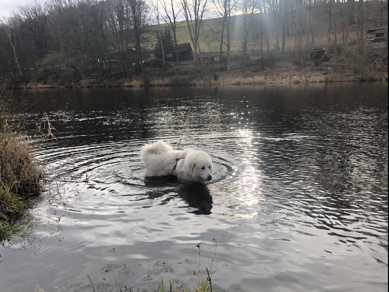 Und gleich nochmal baden, weiiil, heute ist schönes Badewetter für die Bella.