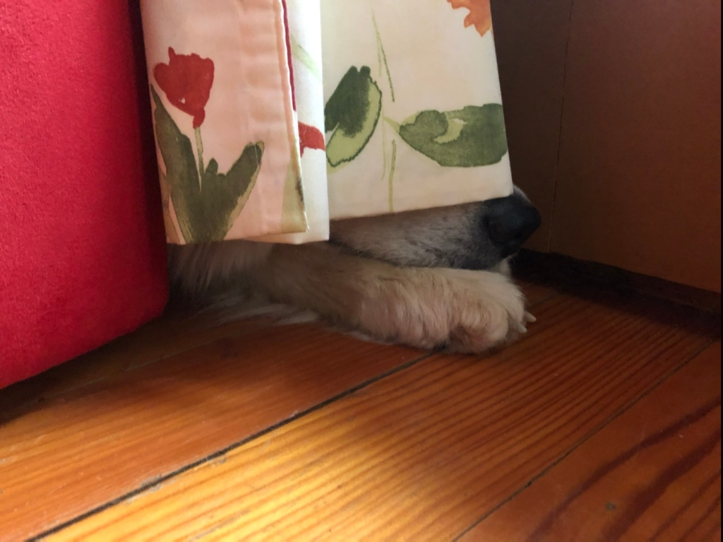 Keiner sieht mich!